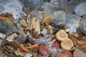 Food-waste-is-unnecessary